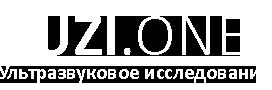 logo_uzi_1